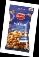 Nutisal peanuts Dry roasted 40g