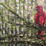 R-Bird