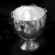 Silverskål natur