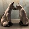 Siames katter