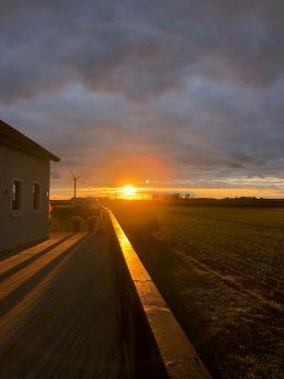 Solnedgång över gården