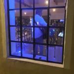 fönster-musik