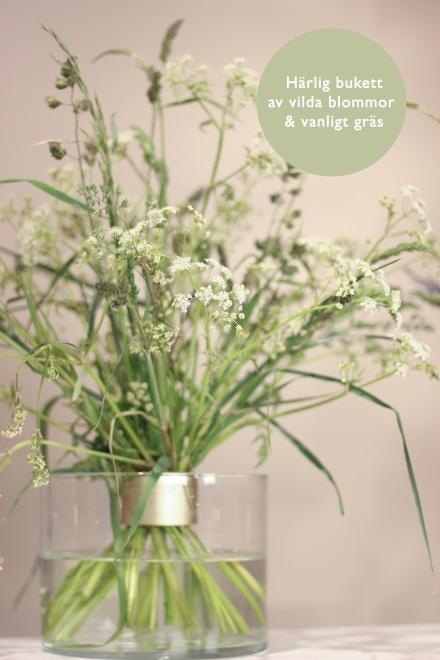 Härlig bukett av vilda blommor och vanligt gräs