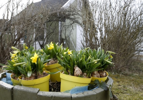 Terje Pedersen/NTB/TT Påskhelgens väder ser ut att bli perfekt för den som vill påta i trädgården. Tvåsiffrig värme är på väg in över landet. Arkivbild