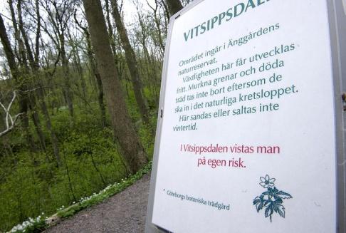 BJÖRN LARSSON ROSVALL / TT Vitsippsdalen. Arkivbild.