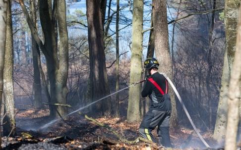 Peo Möller En av de skogsbränder som härjar under måndagen. I detta fall i trakterna av Bökestadsnäs vid sjön Raslången i Kristianstad kommun.