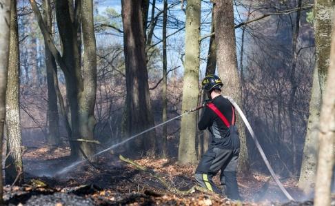 Peo Möller/TT En av de skogsbränder som härjade under måndagen, i detta fall i trakterna av Bökestadsnäs vid sjön Raslången i Kristianstad kommun.