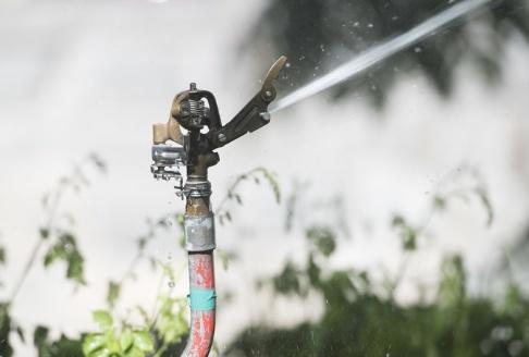 Fredrik Sandberg/TT En ny vattenkris kan vänta i sommar. Grundvattennivåerna ser på många håll klart sämre ut än inför förra sommaren. Arkivbild.