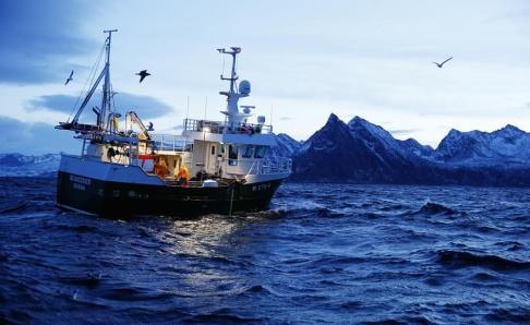 Cornelius Poppe/NTB Scanpix/TT Torskfiske utanför Norge 2015. Arkivbild