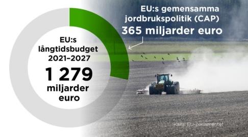Ingela Landström/TT Den långsiktiga finansieringen av jordbrukspolitiken bestäms i EU:s långtidsbudget.