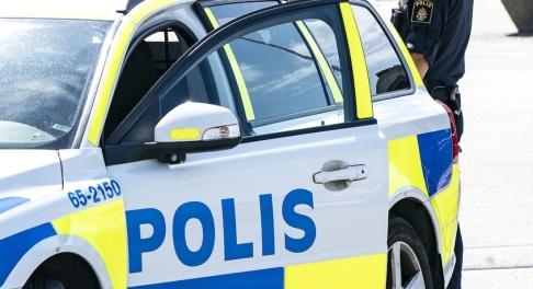 Johan Nilsson/TT Polisen hittade en skadad hund fastkedjad i skogen. Arkivbild.