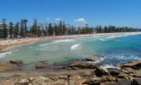 Gustav Sjöholm/TT Manly Beach norr om centrala Sydney stängdes efter den misstänkta hajattacken. Arkivbild.