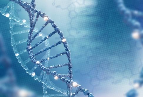 Ravil Sayfullin Genom dna-analys har forskare kunnat visa att anorexia både hänger ihop med andra psykiatriska sjukdomar och med ämnesomsättningen. Arkivbild av en dna-spiral.
