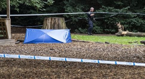 Johan Nilsson/TT Polisen har sökt med hund innanför avspärrningarna i Pildammsparken.
