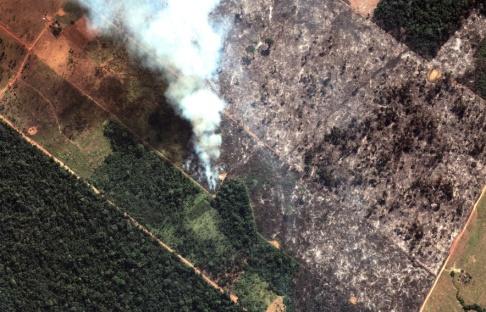 Maxar/AP/TT Satellitbild som visar brinnande regnskog i den brasilianska delstaten Rondônia.