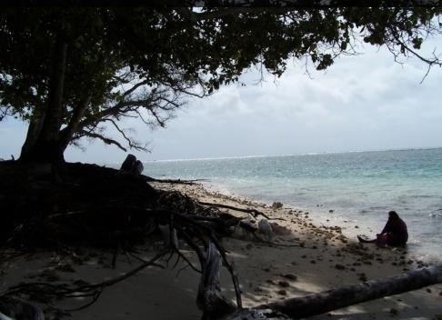 Rusty Middleton/AP/TT Klimatfonden ska hjälpa till att motverka klimatförändringar. Arkivbild från Marshallöarna, en av de platser som är mest utsatta.