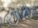 Cykel vi Stallet-2