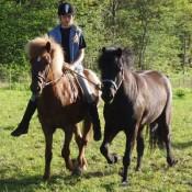 Táta 9 år med Disa som handhäst