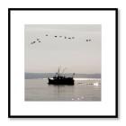 Fiskebåt på spegelblankt Öresund utanför Vikens kust