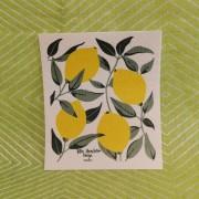 Komposterbar disktrase citrus