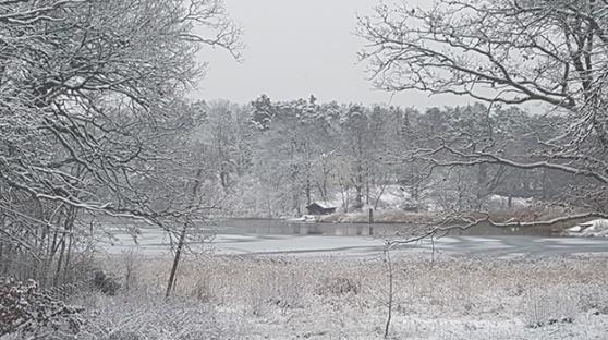 Gråviken, ett av områdena som föreslås bli fredningsområde.