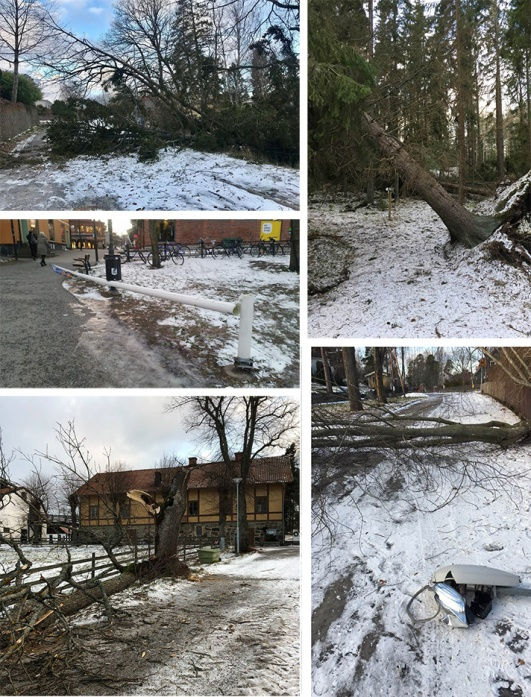 På facebookgruppen Lidingös Anslagstavla var det många som la ut bilder på ikullblåsta träd. Här bland annat från Constantiavägen, Södergarn-Furutorp, Elfvik och en flaggstång i Lidingö centrum.