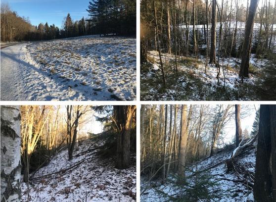 Bilder från området som var tänkt att bebygga.