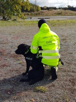 Anton-Nalle-Explosivhund Miljö & Säkerhet Sverige AB-Miljöhund
