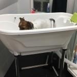 Iza njuter i badet