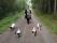 Zorro, Bacchi, Iza och Ditte på promenad