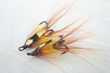 Megan Boyd Shrimp