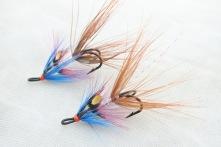 Wilkinsson Shrimp