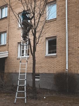 Trädbeskärning Karlstad