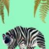 Zebear| Ethnicity | Print