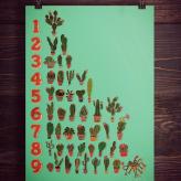 Kaktus Räkna | Print
