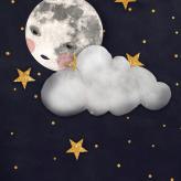 Misty moon  Kort