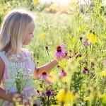 Liten flicka plockar blommor