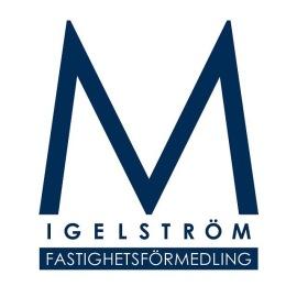 www.fingerformat_logotyp_M-Igelstrom-fastighetsbyra