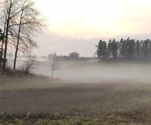 Naturupplevelse. Jag använder alla sinnen! Lyssnar, doftar, iakttar, känner, smakar. Att vara i skog och mark är att vara fullständigt närvarande. .