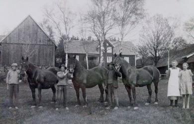 Näraby gård, omkring 1920.