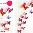 Fjärilar med enkla vingar