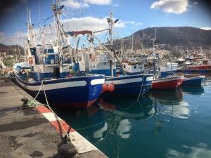 Los Cristianos, nära skolan finns hamnen med fisket – och båttrafiken till de övriga Kanarieöarna.