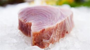 Tonfisk kotletter (1kg) -