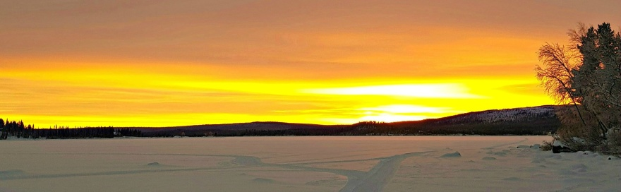 Foto: Anna Mämmi