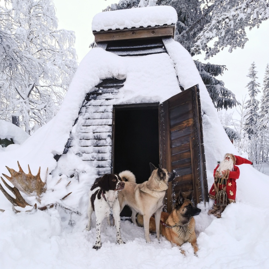 God Jul och Gott nytt år från oss i Lapplandsfjällen