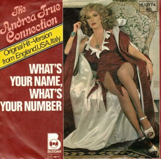 The Andrea True Connection -