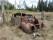 Skrotbil i skogen