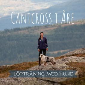 Canicross i Åre (1)