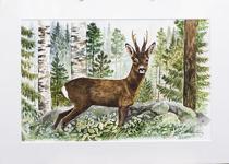 Stig Erinder 55x40 Akvarell orginal