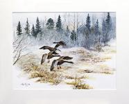 Stig Erinder 55x45 Akvarell orginal
